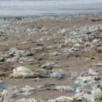 Is Plastic Pollution Destroying Our Health?